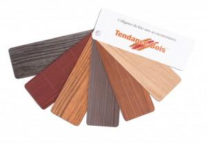 Choix de couleurs pour portes en fibre de verre